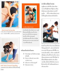 Thai TTC 4